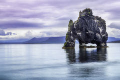 Hvitserkur, the troll rock. A rock in Iceland said to be a petrified troll Royalty Free Stock Photos