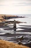 Hvitserkur, zwart zand, basaltstapel, fjord, IJsland Royalty-vrije Stock Afbeeldingen