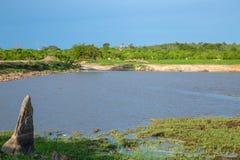 Hwange Nationaal Park royalty-vrije stock afbeelding