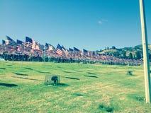 Hwy amerikanska flagganStillahavskusten royaltyfri bild