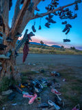 HWY 395 Shoe Tree Stock Photo