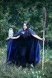 Häxa med en fågel i skogen Royaltyfri Bild