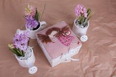 Hyacint royalty-vrije stock fotografie