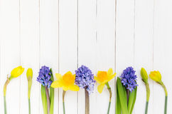 Hyacint och pingstlilja på vit träbakgrund Royaltyfria Bilder
