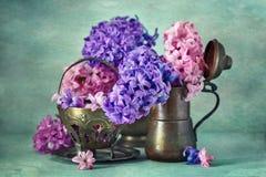 Hyacinten blommar i en kopparkanna Royaltyfri Foto