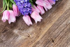 Hyacinten en tulpen Stock Fotografie