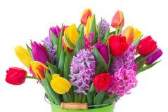 Hyacinten en tulpen Stock Afbeeldingen
