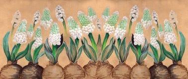 hyacinten geneeskrachtig, parfumerie en kosmetische installaties behang Gebruik gedrukte materialen, tekens, affiches, prentbrief vector illustratie
