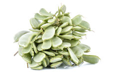 Hyacinth bean valor or indian papdi beans on white background.  Stock Image