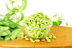 Hyacinth bean valor or indian papdi beans on white background. Fresh Hyacinth bean valor or indian papdi beans on white background Royalty Free Stock Image