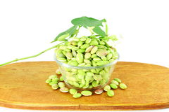 Hyacinth bean valor or indian papdi beans on white background. Fresh Hyacinth bean valor or indian papdi beans on white background Royalty Free Stock Images