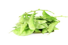 Hyacinth bean valor or indian papdi beans on white background. Fresh Hyacinth bean valor or indian papdi beans on white background Stock Images