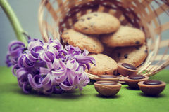 Hyacinth, cookies, candy and wicker basket. On a green background stock images