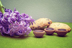 Hyacinth, cookies, candy and wicker basket Royalty Free Stock Photo