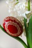 Hyacinth e ovo de easter brancos Imagem de Stock