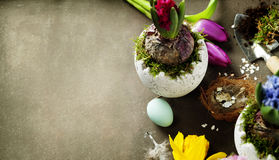 Hyacinth flowers, garden tools and easter eggs Royalty Free Stock Images