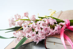 Hyacinth flowers on open vintage book Royalty Free Stock Photos