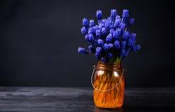 Hyacinth flowers in an orange vase Royalty Free Stock Images