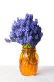 Hyacinth flowers in an orange vase Stock Photos