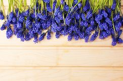 Hyacinth flowers on a wooden board. With copyspace stock photography
