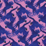 Hyacinth macaw parrot pattern. Royalty Free Stock Image