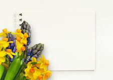 Hyacinth and narcissus flowers in corner arrangement with notepad stock images