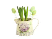 Hyacinth in a pot with Easter eggs Stock Photo