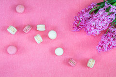 Hyacinth and sweet berry and vanilla macaroons Royalty Free Stock Photography