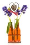 Hyacinths Stock Photos