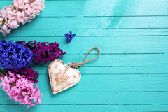 Hyacinths and decorative heart on green wooden background.