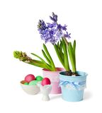 Hyacinths and Easter eggs Stock Photography