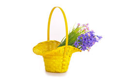 Hyacinths and other  flowers in the  basket Royalty Free Stock Photos