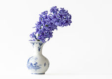 Hyacinths in a Vase. Some pretty purple Hyacinths in a vase Stock Image