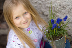 Hyacinthus Royalty Free Stock Photo