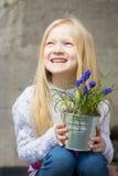 Hyacinthus Stock Images