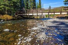 Hyalite Canyon Creek Royalty Free Stock Image