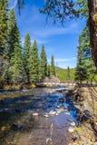 Hyalite Canyon Creek. Hyalite Creek running through Hyalite Canyon near Bozeman, Montana Royalty Free Stock Photo