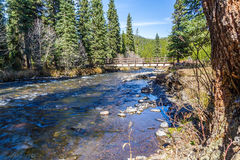 Hyalite Canyon Creek. Hyalite Creek running through Hyalite Canyon near Bozeman, Montana Stock Image
