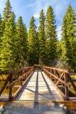Hyalite Creek Bridge. Wooden bridge crossing Hyalite Creek in Hyalite Canyon near Bozeman, Montana Royalty Free Stock Photos