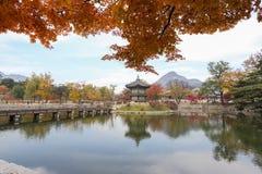 Hyangwon-jeong stockbilder