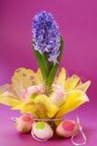 Hyazinthe für Ostern Lizenzfreies Stockfoto