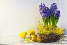 Hyazinthen mit Ostereiern Stockbilder