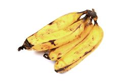 Hybrid bananas Royalty Free Stock Image