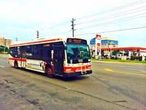 Hybrid- elektrisk buss i Toronto arkivbilder