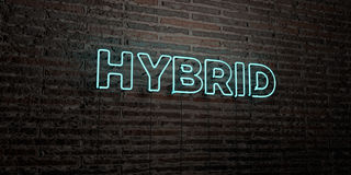 HYBRID -Realistic Neon Sign on Brick Wall background - 3D rendered royalty free stock image Stock Photos