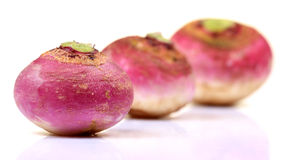 Hybrid red turnips Royalty Free Stock Image