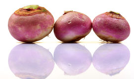 Hybrid red turnips Royalty Free Stock Image