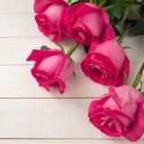 Hybrid tea roses Stock Image