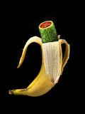 Hybride de GMO Photos libres de droits