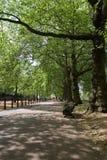 hyde πάρκο του Λονδίνου Στοκ φωτογραφία με δικαίωμα ελεύθερης χρήσης